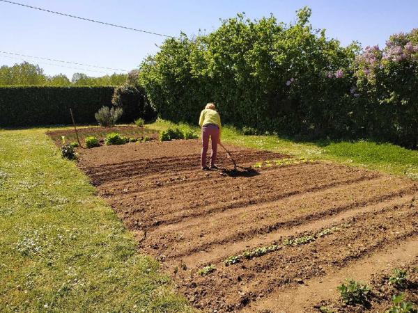 Yvette dans son grand jardin prépare les récoltes pour les confinés